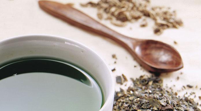Herbata z czystka - cudowne panaceum?